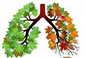 dohányzó kúra aeroszol leszokni a dohányzást 90 perc alatt